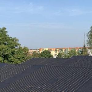 Dach 04